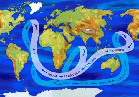 termohalina 3 El clima y el agua.