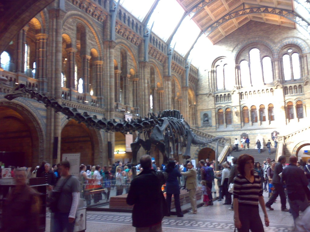 diplodocus museo historia natural londres