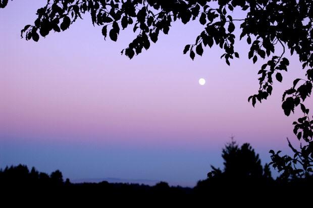 ascencrepusculo ¿Has mirado alguna vez el crepúsculo de espaldas?