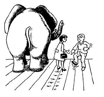 pisada-elefante