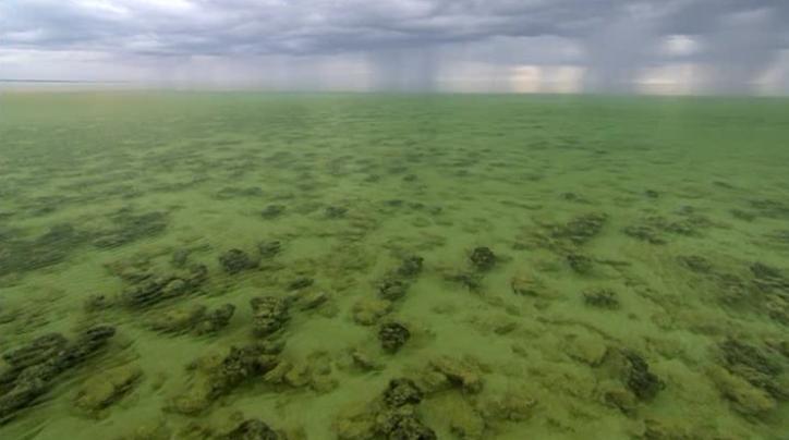 mar verde Hace mucho tiempo el mar era verde.